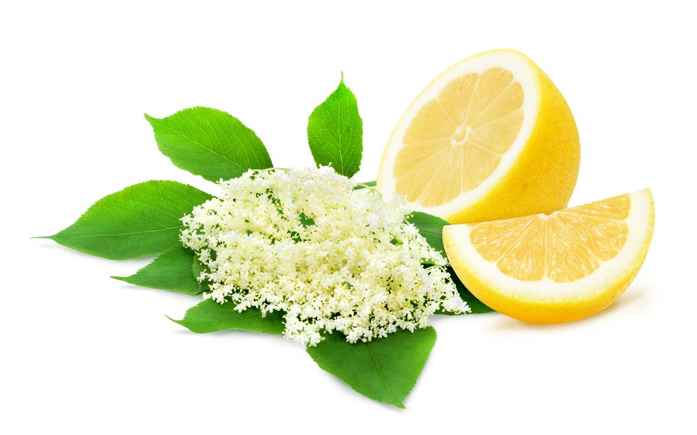 Baza spolu s vitamínom C sú vynikajúco podporia obranyschopnosť organizmu. Foto: Shutterstock