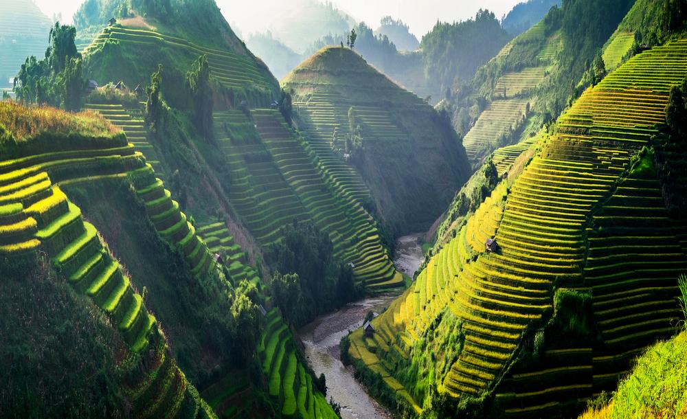 Vietnam. Foto: Shutterstock