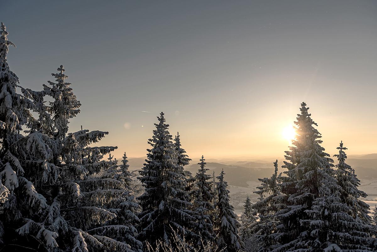 Zima na Šumave. Foto: Oberoesterreich Tourismus, David Lugmayr