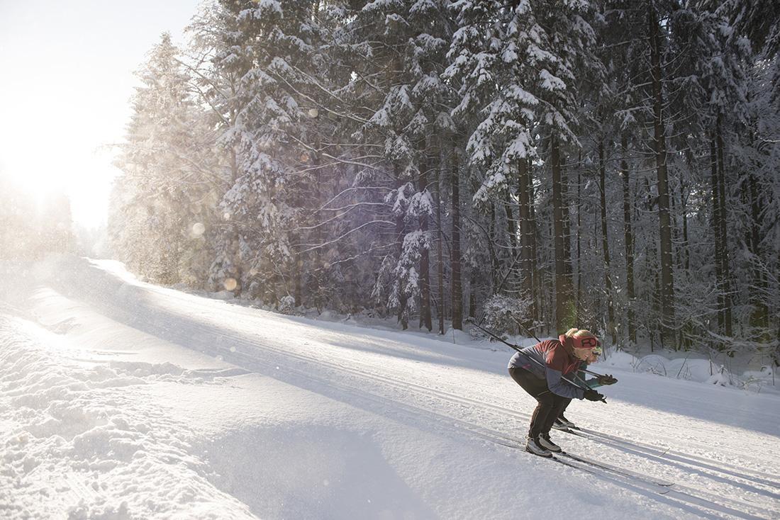 Bežkovanie, Böhmerwald(Šumava). Foto: Oberoesterreich Tourismus, David Lugmayr