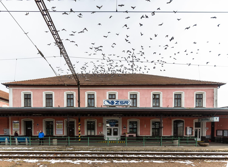 Na železničnej stanici v Štúrove. Foto: Miro Pochyba