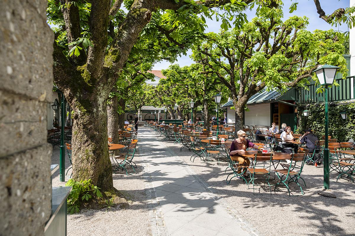 Ako inak, v Linzi majú aj krásne pivné záhrady. Táto sa nachádza vedľa Landstrasse. Foto: Martin Matula