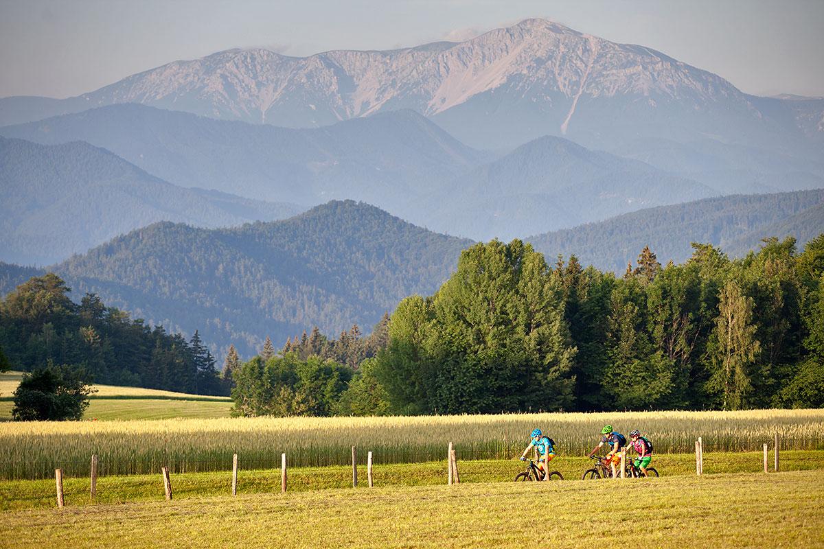 Piestingtalská cyklotrasa. Foto: (c) Wiener Alpen/Thomas Bartl, mountainbikeguides.com