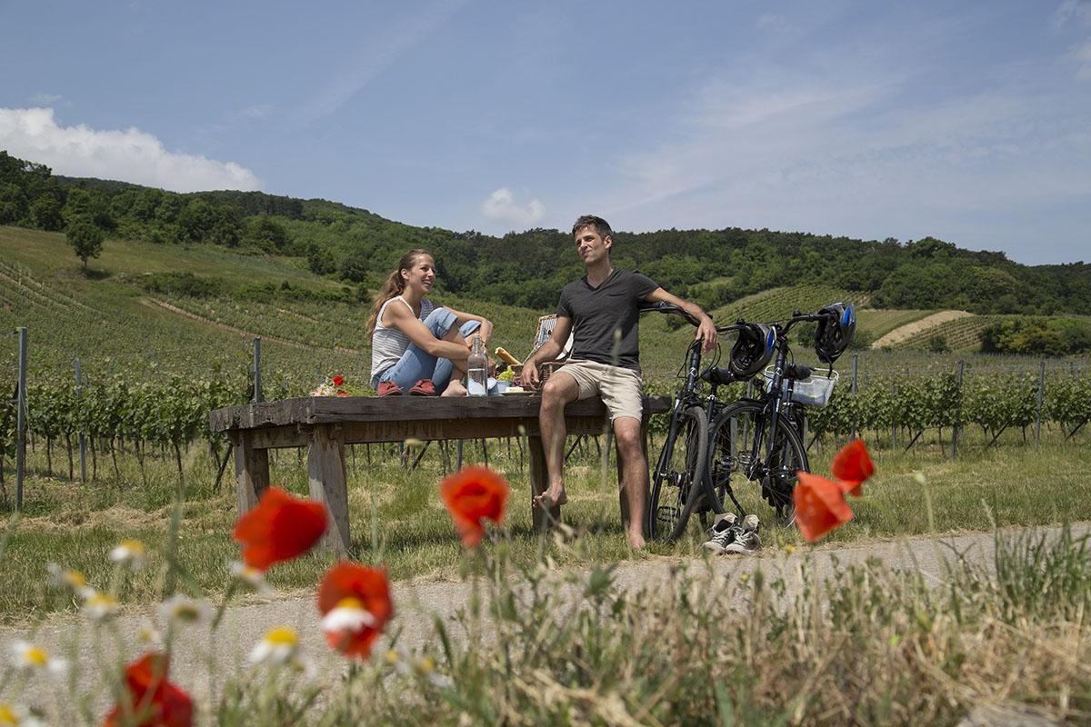 Hviezdicové cyklotrasy. Foto: (c) Raimo Rumpler