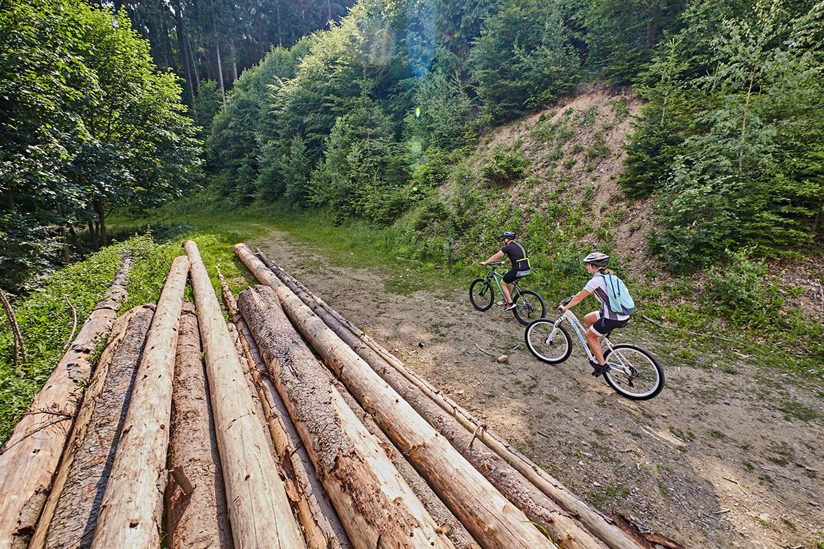Za Vrútkami sa hneď ocitnete v lese. Foto: Peter Drežík