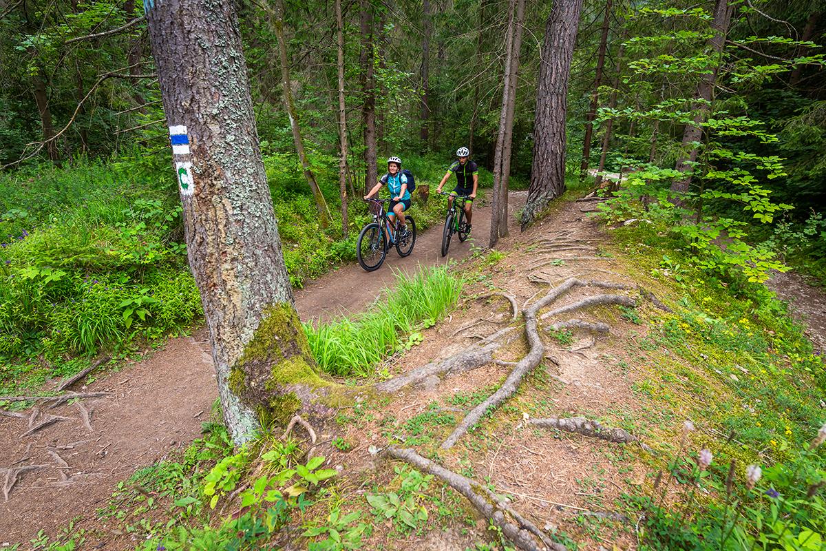 Kto si vyjde na Suchú Belú alebo na Kláštorisko peši, môže si tam požičať bicykel a zviezť sa na ňom dole. Foto: Miro Pochyba