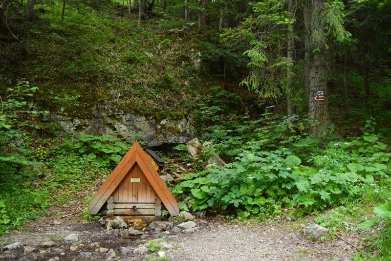 Ak zrovna nežijete pri horskom prameni, najlepšou voľbou bude filtrácia vašej vody. Foto: Shutterstock