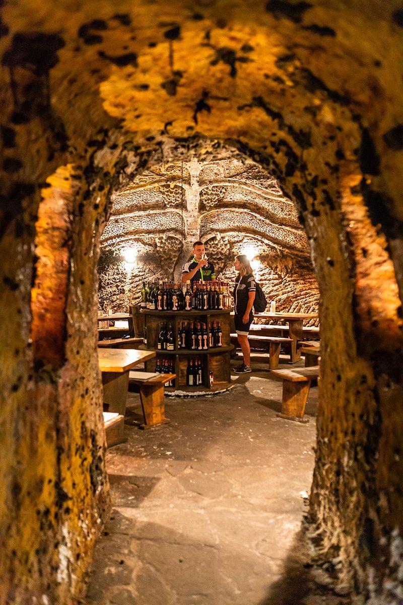 Sudy a steny pivnícpokrýva akoby kožuštek ušľachtilejtmavosivej plesne. Foto: Miro Pochyba