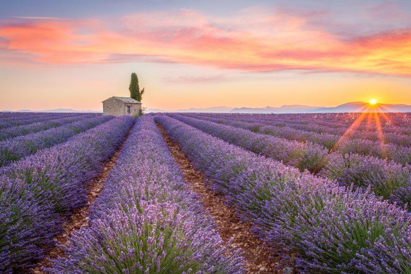 Provensálsko, Francúzsko. Foto: Shutterstock