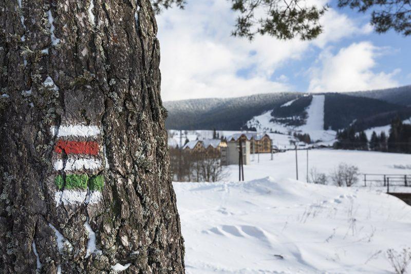 Lyžiarske stredisko Telgárt. Foto: Miro Pochyba