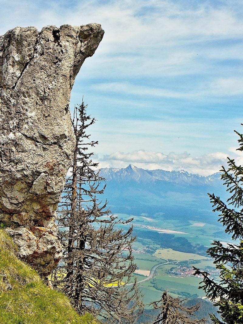 Trasa Poludnica runu má 23 kilometrov a vedie cez vrch Poludnica v nadmorskej výške 1 549 metrov.