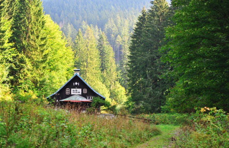 Korytnica. Foto: Shutterstock
