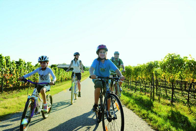 V Burgenlande nájdete vyše 2 500 km cyklotrás. Foto: Burgenland Tourismus, Peter Burgstaller