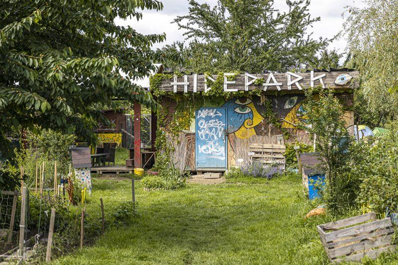 Komunitná záhrada na Hideparku. Foto: Miro Pochyba