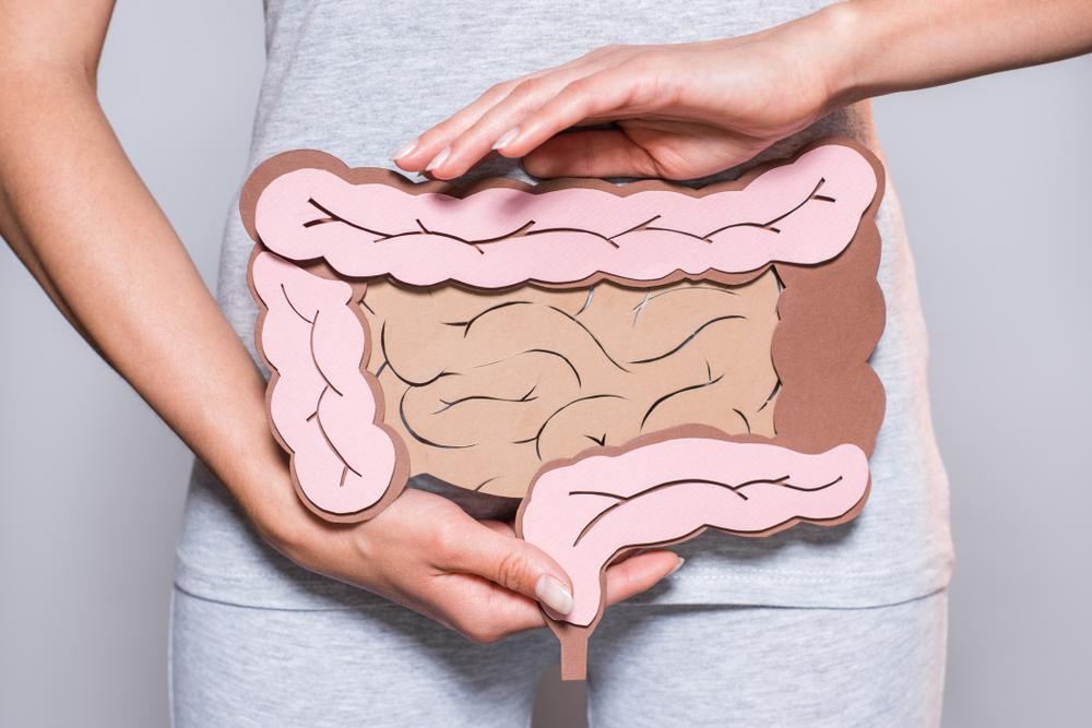 Hrubé črevo. Foto: Shutterstock