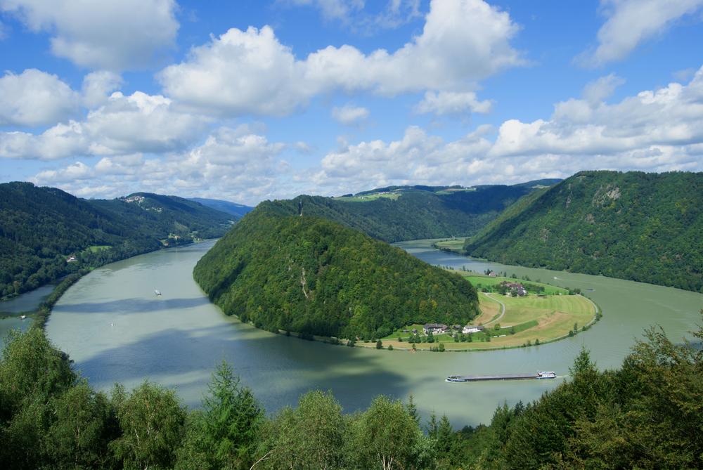Donauschlinge. Foto: Shutterstock