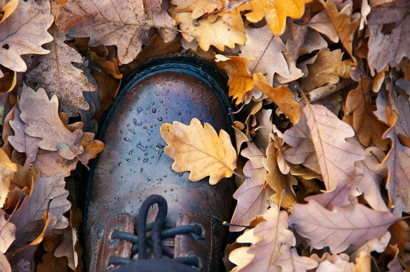 Starostlivosť o kožu. Foto: Shutterstock