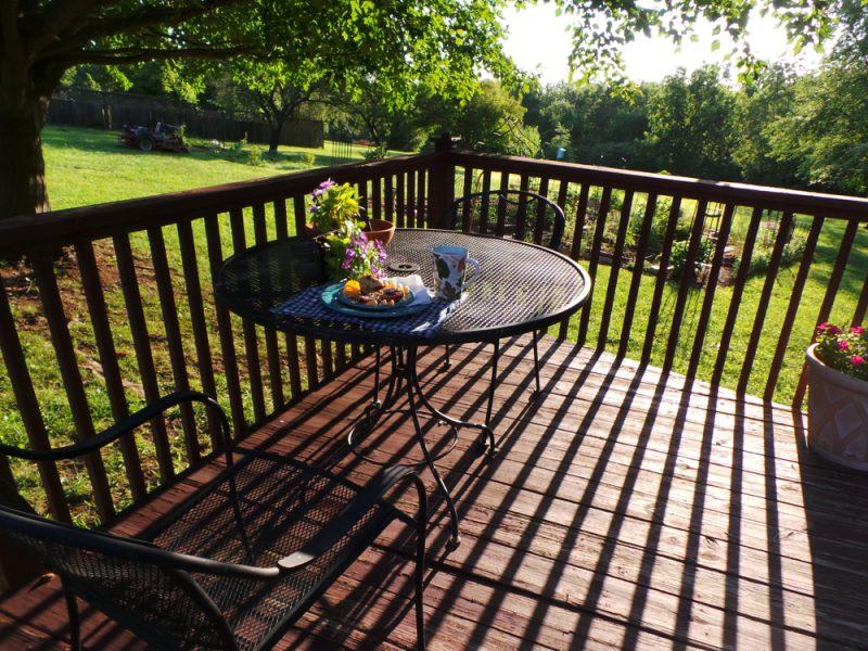 Raňajky v tráve Foto: Shutterstock