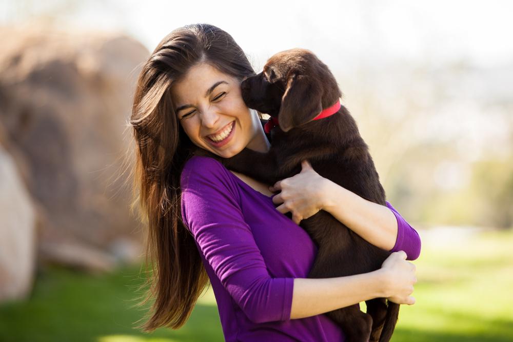 Milovník psov. Foto: Shutterstock