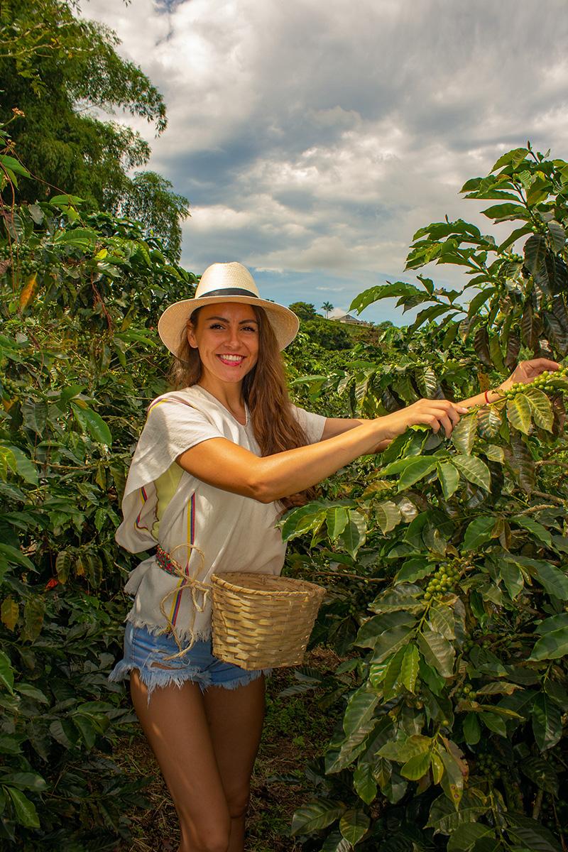 Kolumbia. Foto: Bubo
