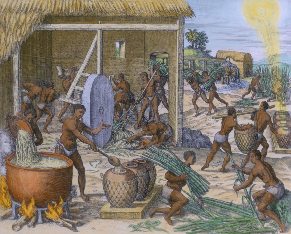 Africkí otroci spracovávajú cukrovú trstinu na Karibskom ostrove Hispaniola, 1595.