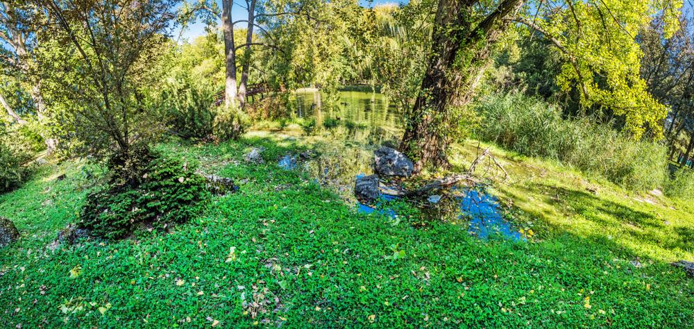 Nitra park. Foto: Shutterstock