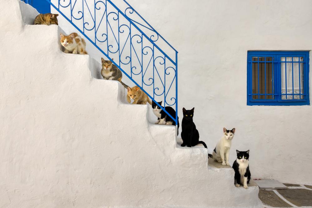 Grécko. Foto: Shutterstock