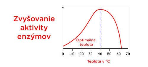 Zvyšovanie aktivity enzýmov. Foto: Vitarian.sk