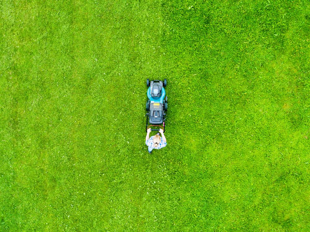Kosenie trávnika. Foto: Shutterstock
