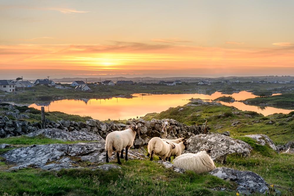 Región Connemara v Írsku. EuroVelo 1. Foto: Shutterstock