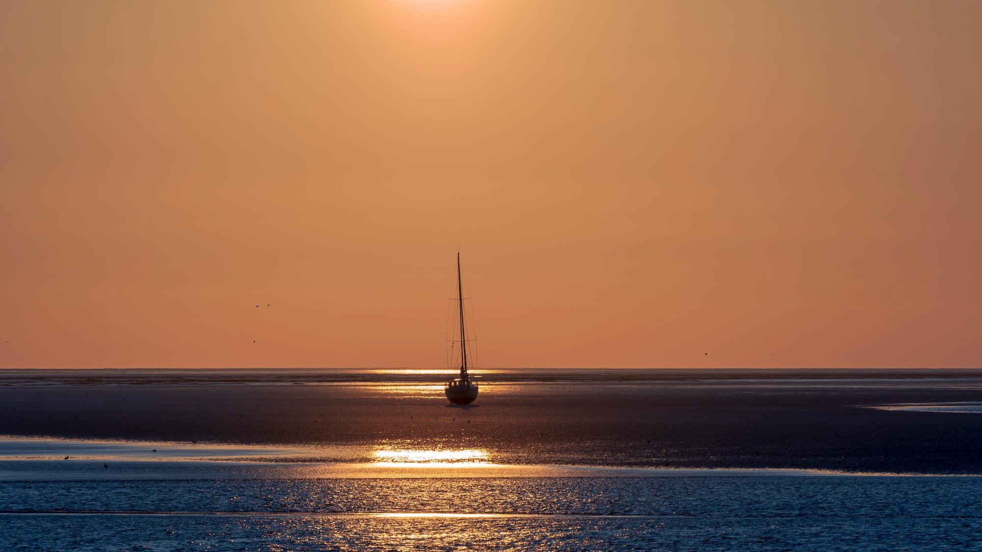Odliv vo Wadden sea. EuroVelo 12. Foto: Shuttestock