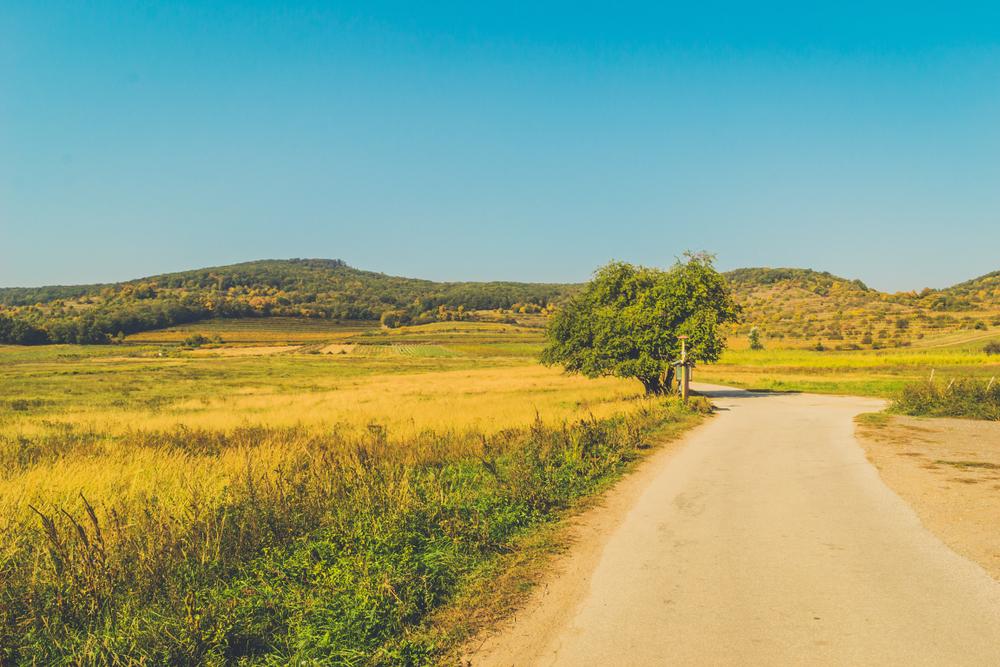 Pezinok, Malé Karpaty. Foto: Shutterstock