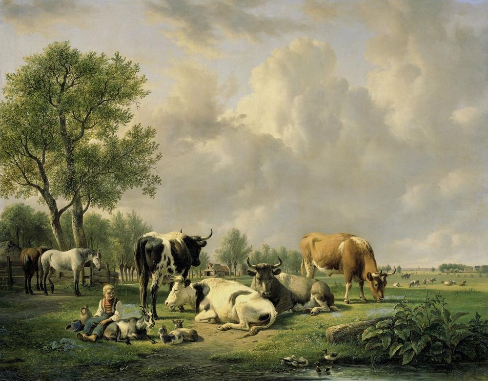 Chov kráv pri vode môže spôsobiť zelenú farbu vody a rozmnoženie rias. Foto: Shutterstock