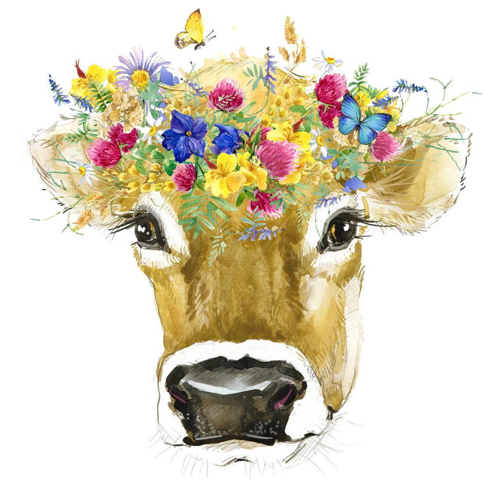 Dnešný dobytok vzišiel len z 80 zvierat. Foto: Shutterstock