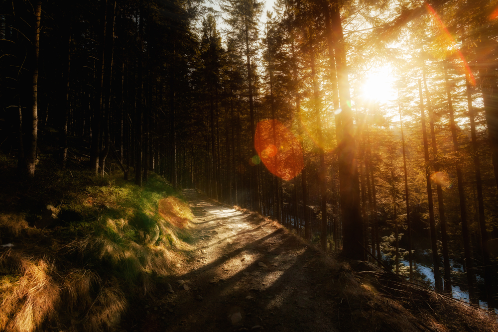 Babia hore, Horná Orava. Foto: Shutterstock