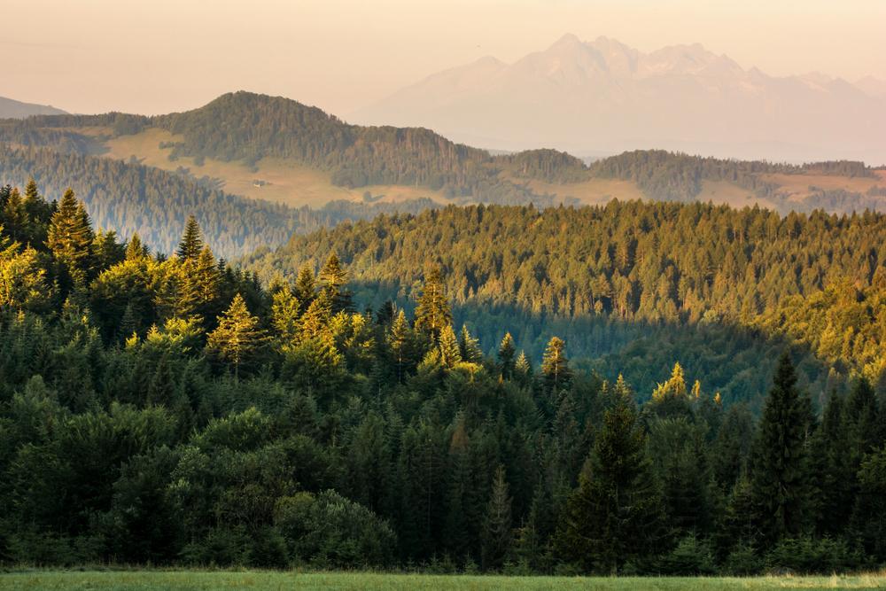 Východné Karpaty. Foto: Shutterstock