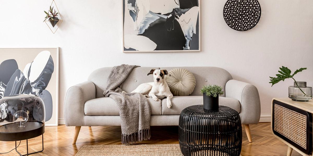 Sivá v interiéri