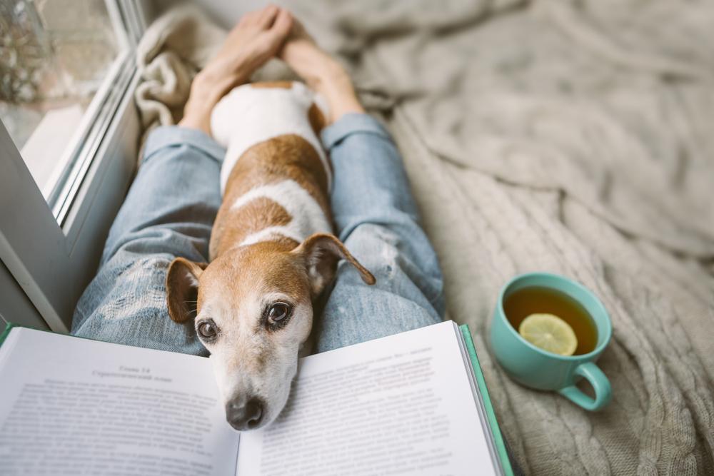 Relax počas pandémie. Foto: Shutterstock