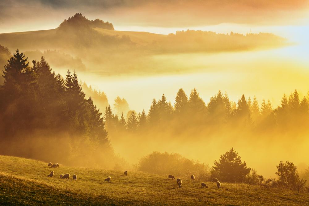 Zázrivá, Orava. Foto: Shutterstock