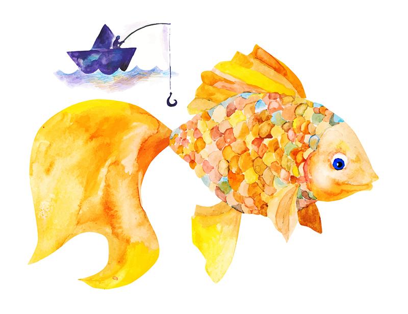 Zlatá rybka ryba. Foto: Shutterstock