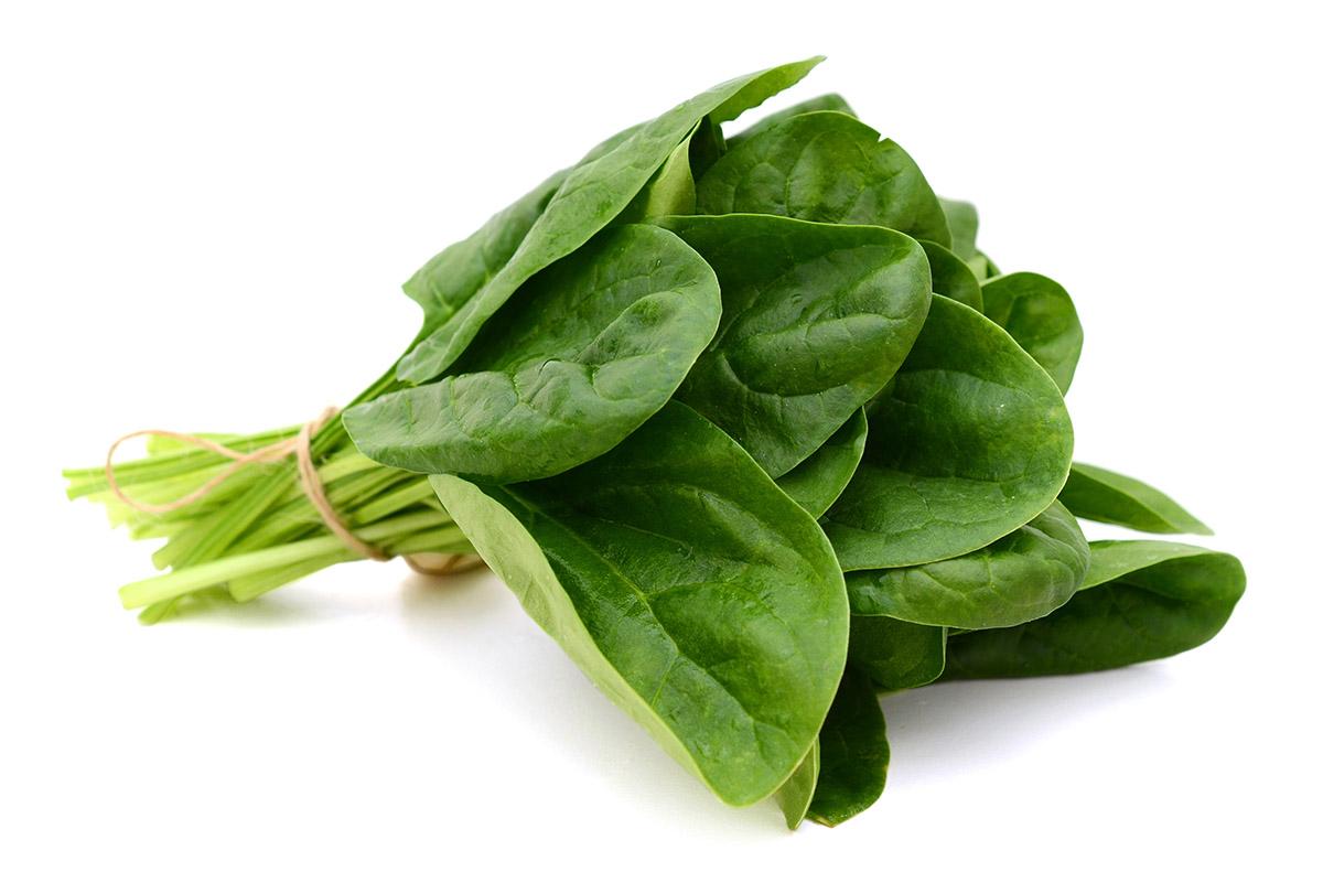 Zelené listy obsahujú veľa horčíka. Foto: Shutterstock
