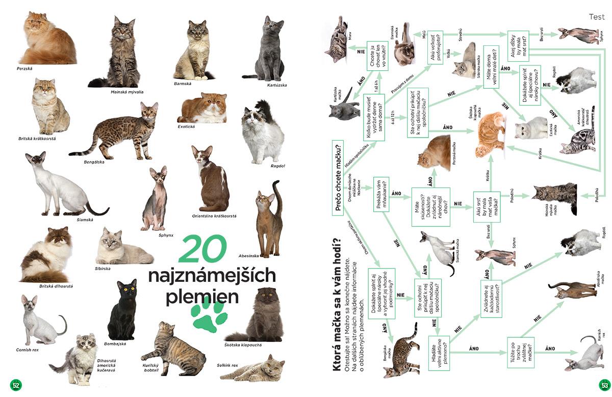 Plemená mačiek 52-53