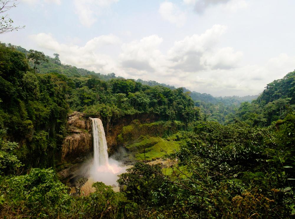 Kamerun, Afrika. Foto: Shutterstock