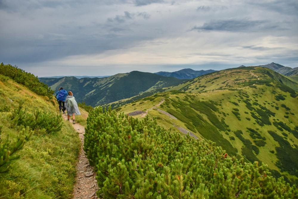 Hrebeňovka, Nízke Tatry. Foto: Shutterstock