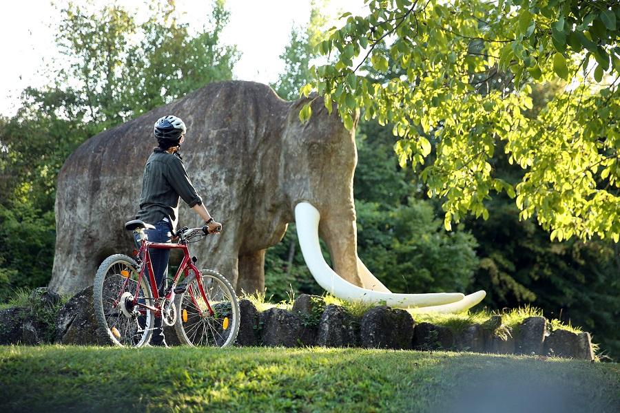Trainsentalská cyklotrasa (c) Mostviertel Tourismus, weinfranz.at