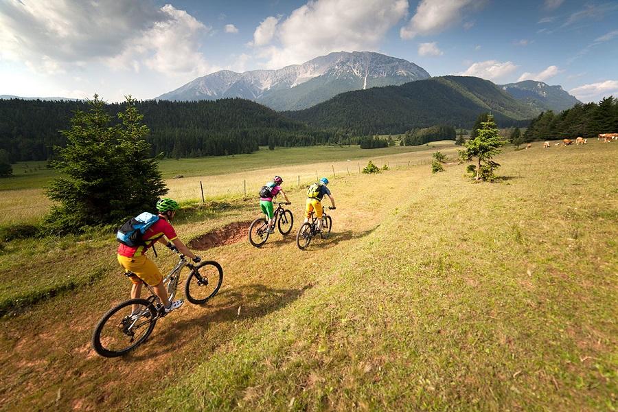 Piestingtalská cyklotrasa (c) Wiener Alpen/Thomas Bartl, mountainbikeguides.com